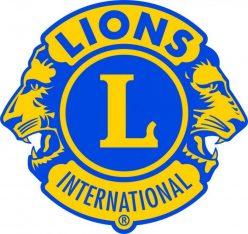 LIONS Club Karlsruhe Fächer